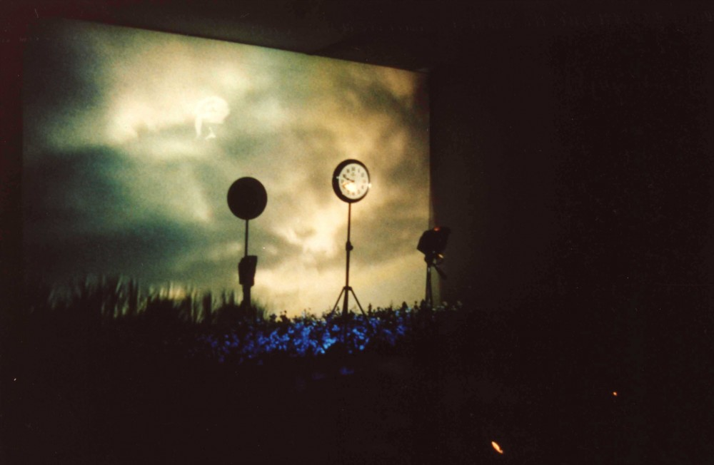 Song of Mandrake, 1999, Dimension variable, Video Installation, Color/Sound, Couleur/Sonore