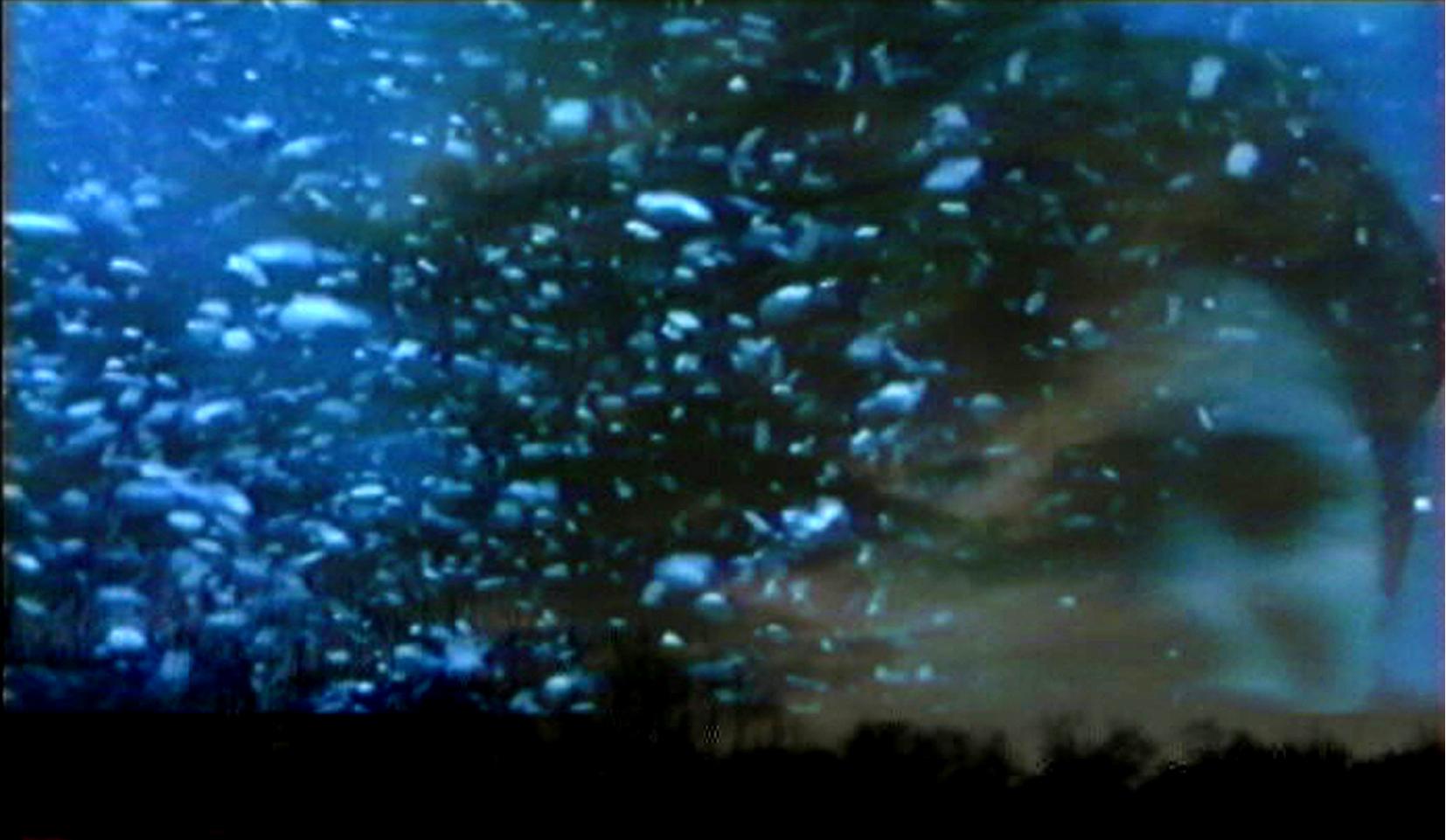 Rêve (Dream), 2001, 3mn, Couleur, sonore, Color/sound, Vidéo monobande, Single chanel video