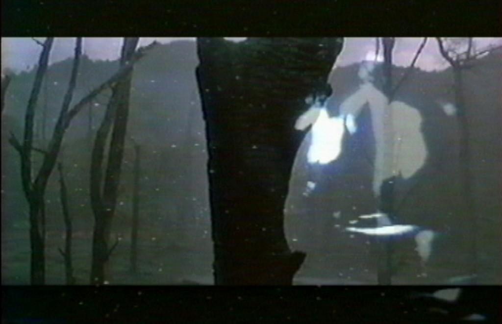 Intersection, 2000, Installation Vidéo et son, Projection continue montée en boucle, dans une chambre noire